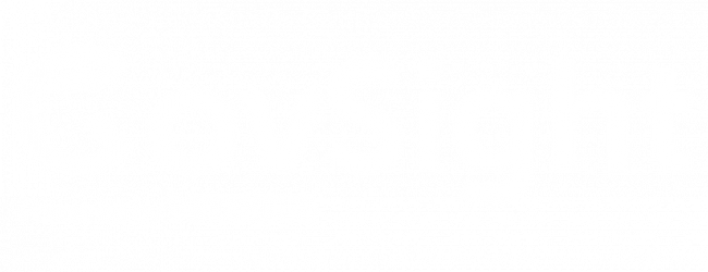 Govsight logo